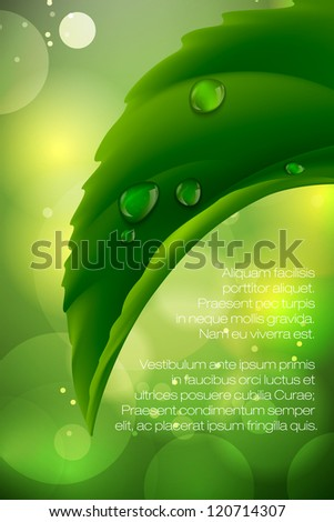 dew drops on green leaves - stock vector