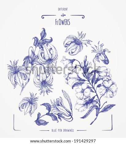 Different flowers - stock vector