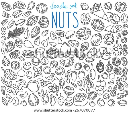 Different kinds of nuts. Set of doodles, hand drawn rough simple sketches. Vector icons isolated on white background. - stock vector