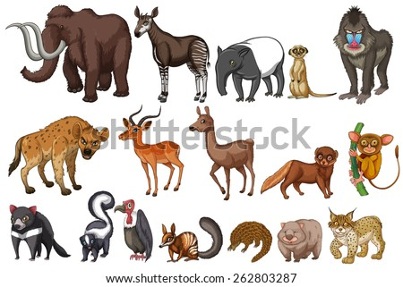 Different kinds of rare animals - stock vector