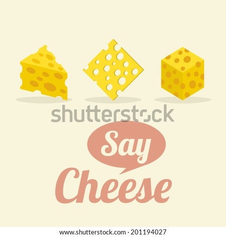 Different Shape of Cheeses Vector Illustration - stock vector