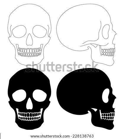 Different side and style human skull isolated set, simple outline and silhouette style - stock vector