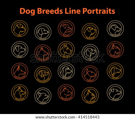 Dog Breeds Line Badges Set. Dog Line Portraits Collection. Boxer, Dachshund, French Bulldog, Beagle, Labrador, Retriever, Bernese, Jack Russell, Shepherd, Husky, Doberman, Mastiff, Schnauzer, Setter - stock vector