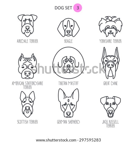 dog breeds set - stock vector