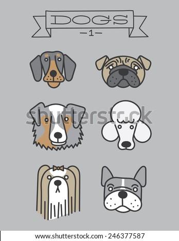 Dog heads. Isolated. doberman, pug, australian shepherd, poodle, shih tzu, french bulldog - stock vector