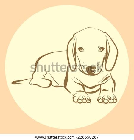 Dog portrait in vector - stock vector