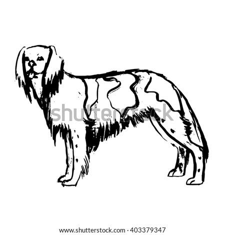 dog vector setter - stock vector