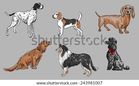 dogs set 2 - stock vector