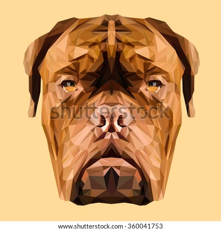 Dogue de Bordeaux French Mastiff dog animal low poly design. Triangle vector illustration. - stock vector
