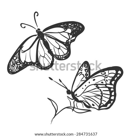 doodle butterfly isolated on white, excellent vector illustration, EPS 10 - stock vector