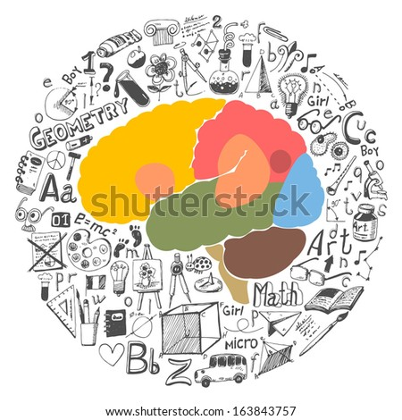 Doodle set & brain sections - stock vector