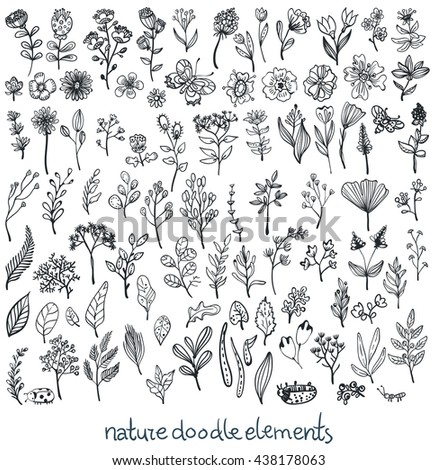 Doodle Sketch nature collection of elements, flowers, leaves and insects, Vector - stock vector
