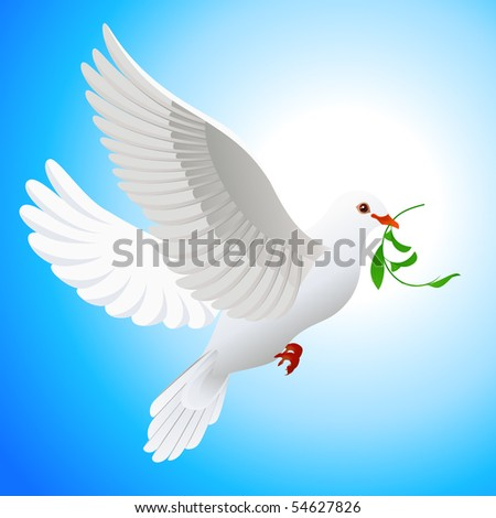 Dove holding leaf, vector illustration - stock vector