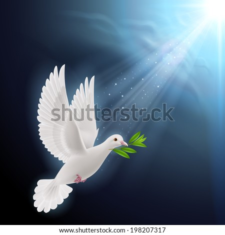 Dove of peace flying with a green twig after flood on a dark background - stock vector
