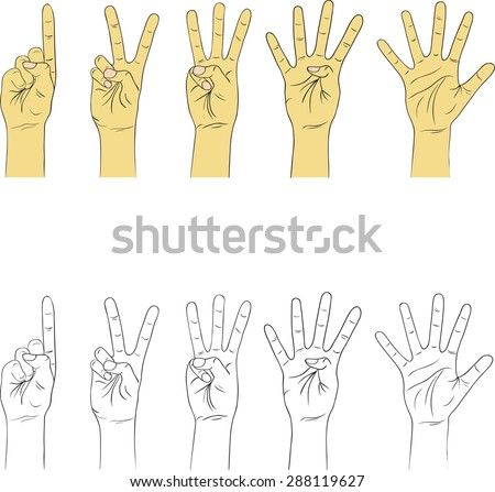 Drawing hand gestures on a blank background. Vector illustration - stock vector