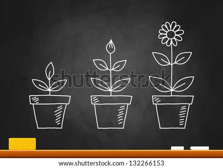 Drawing of flowers on blackboard - stock vector