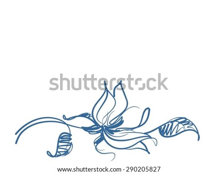 Drawing vector graphics with floral patterns with   tulips for design. Floral flower natural design. Graphic, sketch drawing. - stock vector