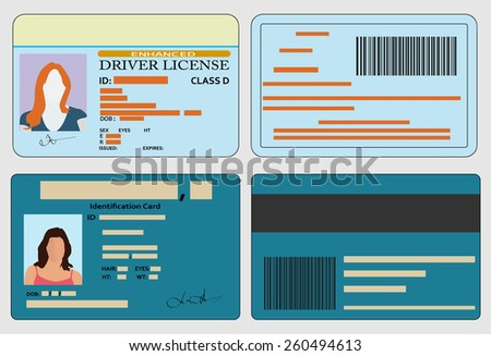 Driver license and identification card - stock vector