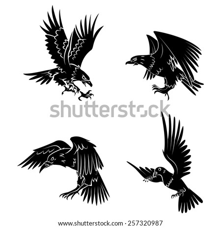Eagle,Dove and Raven - stock vector