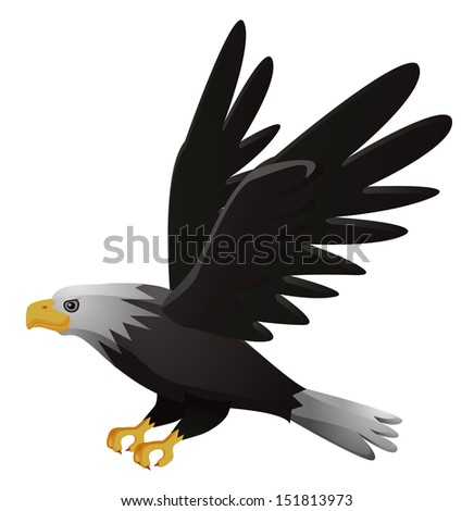 Flying Hawk Vector Flying Hawk Cartoon