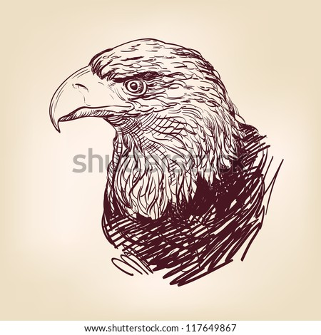 Eagle - hand drawn  vector illustration  isolated - stock vector