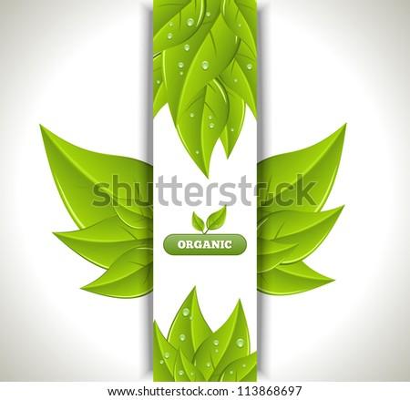 Eco Banner - stock vector
