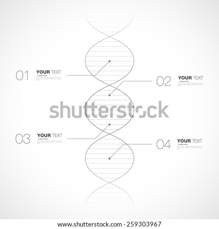 Editable dna infographic design isolated on white background for your text vector stock eps 10 illustration - stock vector
