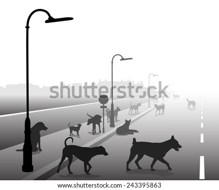 Editable vector illustration of a motley group of stray dogs on a lonely road - stock vector