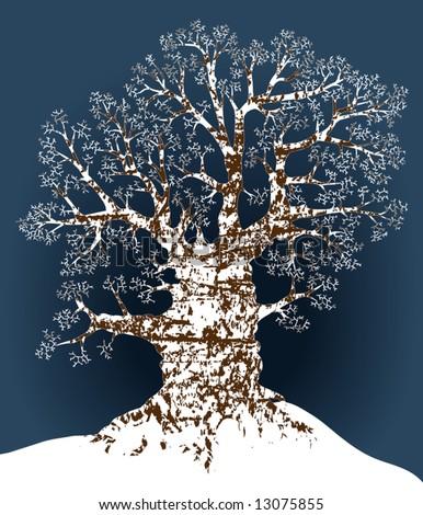 Editable vector illustration of an oak tree in winter - stock vector