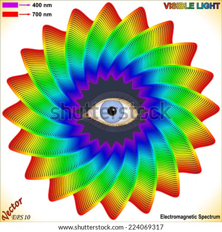Electromagnetic Spectrum - Visible Light - stock vector