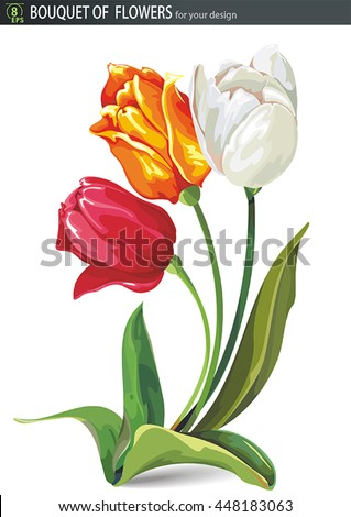 Elegant Beautiful bouquet of tulips flowers, isolated on white background. No transparency and shadows, eps8 - stock vector