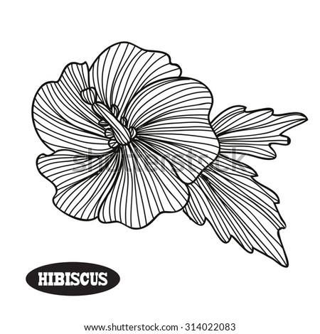 Elegant decorative hibiscus flower, design element. Floral branch. Floral decoration for vintage wedding invitations, greeting cards, banners, scrapbooking - stock vector