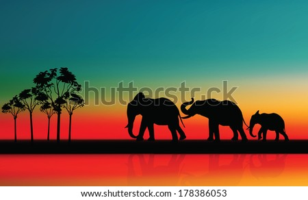 Elephant. Mother with Baby Elephants Walking Outdoors over Sunset - stock vector
