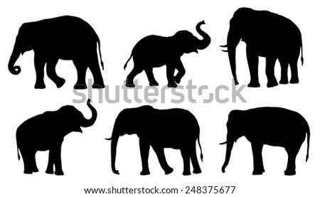 elephant silhouettes on the white background - stock vector