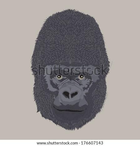engraving style vector hand drawing gorilla head - stock vector