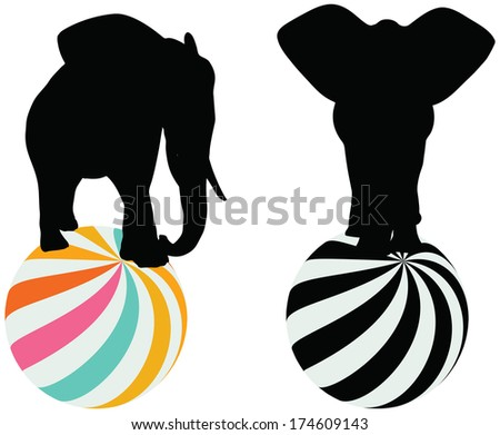 Eps 10 Set of editable vector silhouettes of African elephants on a ball - stock vector