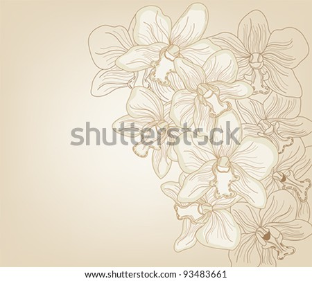Eps10 vector - hand drawn orchid background with space for text - layers separated - easily editable - stock vector