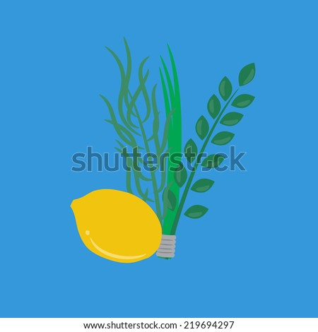 Etrog, lulav hadas and arava for Sukkot festival. - stock vector