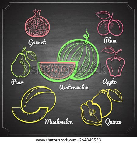 exotic fruits set color chalk painted on black chalkboard vector illustration  - stock vector