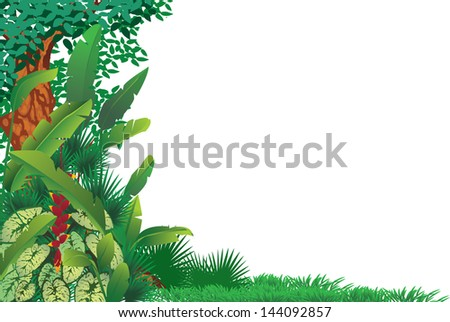 exotic tropical forest - stock vector