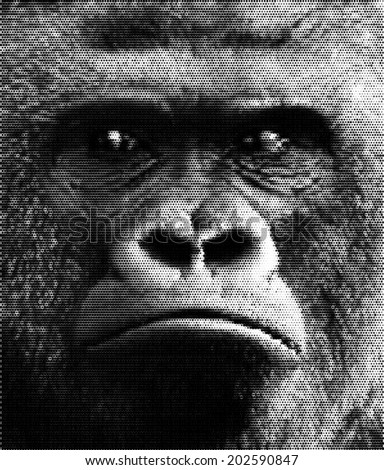 Face portrait of a gorilla male, severe silverback. Menacing side look of the great ape, the most dangerous and biggest monkey. Amazing dotted vector image with high resolution. - stock vector
