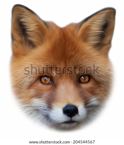 Face portrait of a red fox male, vulpes vulpes, isolated on white background. Smart look of a dodgy vulpes, skilled raptor and elegant forest wild animal. Amazing vector image in oil painting style. - stock vector
