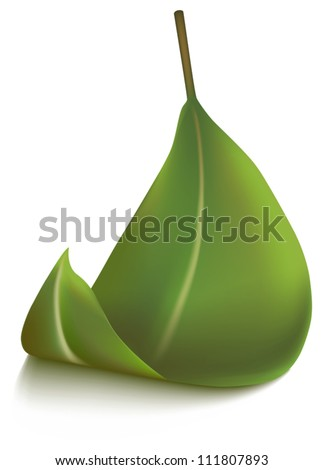 Falling leaf, vector - stock vector