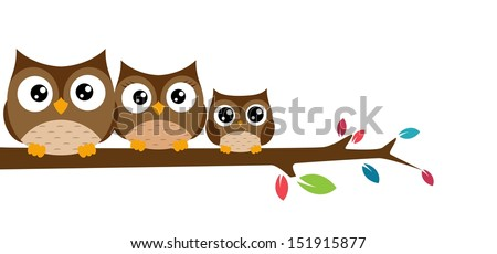 Family of owls sat on a tree branch - stock vector