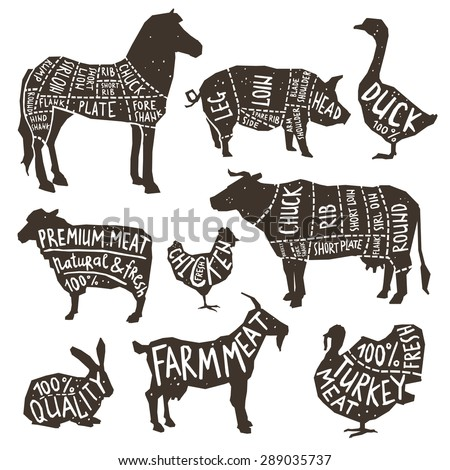 Farm animals and poultry silhouette icons set with typographics isolated vector illustration - stock vector