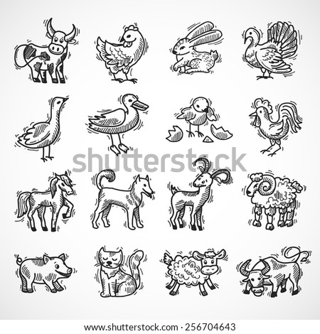 Farm animals sketch set with hog donkey cow goat isolated vector illustration - stock vector