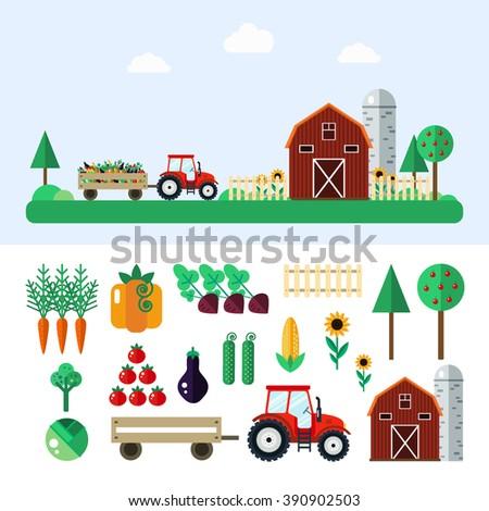 Farm with tractor, vegetables, barn, trees, sunflowers. Farm vector illustration. Farm concept. Farm set - carrot,pumpkin,beet,cabbage,tomato,eggplant,cucumber,corn. Farm vector set in flat style.  - stock vector