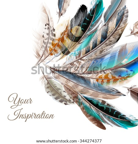 Fashion  vector background with blue white and brown  feathers in realistic style symbol of inspiration - stock vector