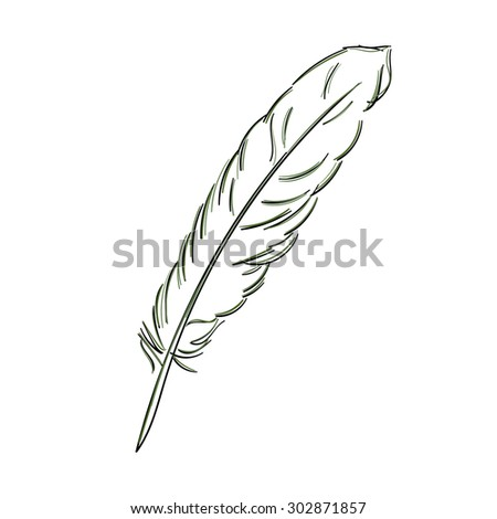 Feather sketch isolated on white background. Hand-drawn feather vector illustration. - stock vector