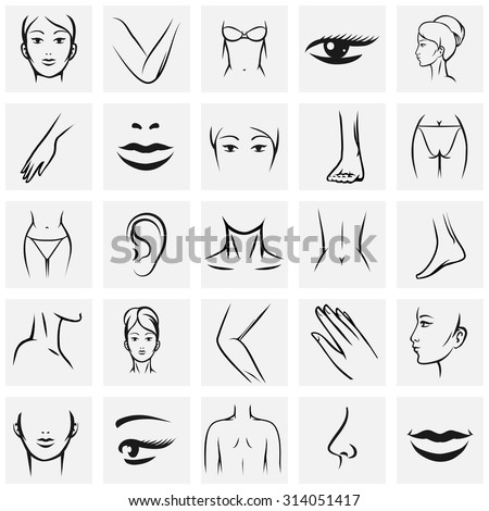 Female body parts icons set. Femininity fashion contour beauty, knee and ass, hand and foot, lip and mouth, vector illustration - stock vector